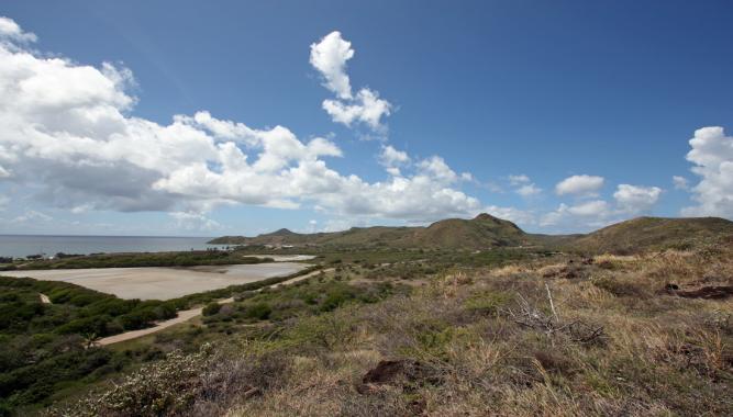 Sea Land Pic 5