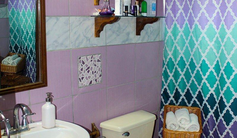 st kitts washroom