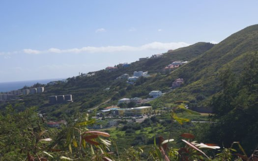 nevis island property for sale