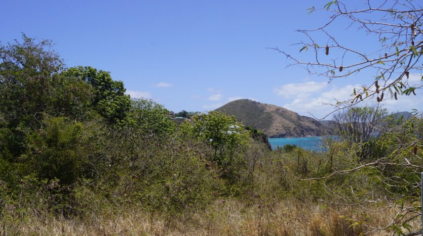 saj st kitts land for sale