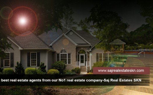 Real-estate-agents