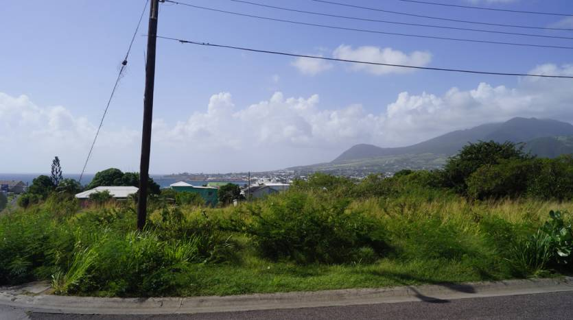 Real estate agents in St Kitts