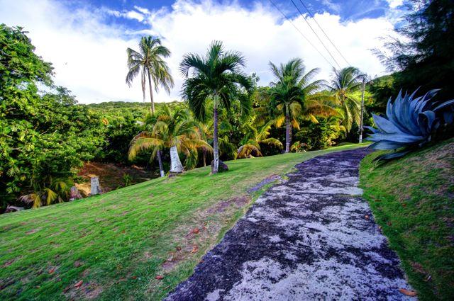 Conaree Gardens 2